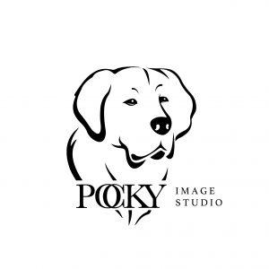 Pocky Image Studio